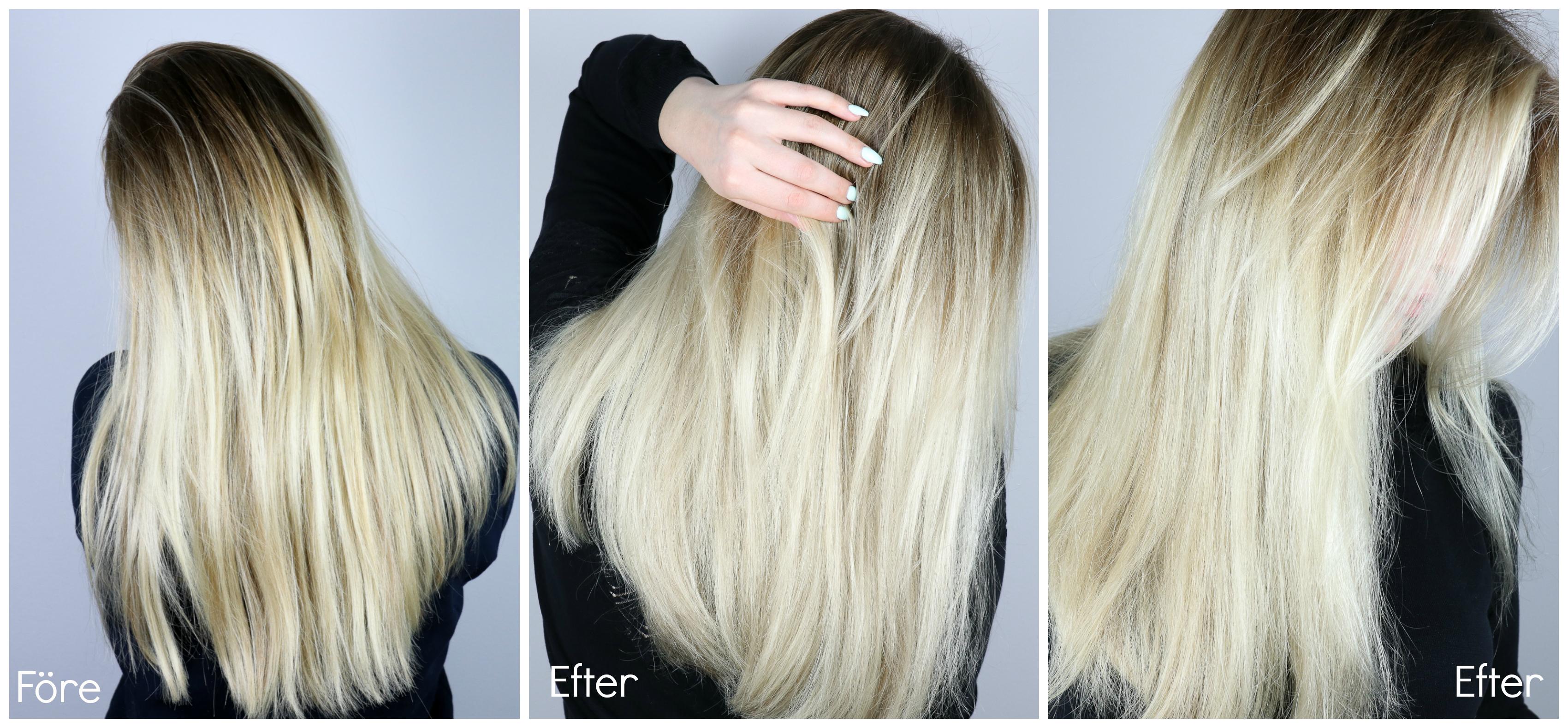 silvershampoo i torrt hår
