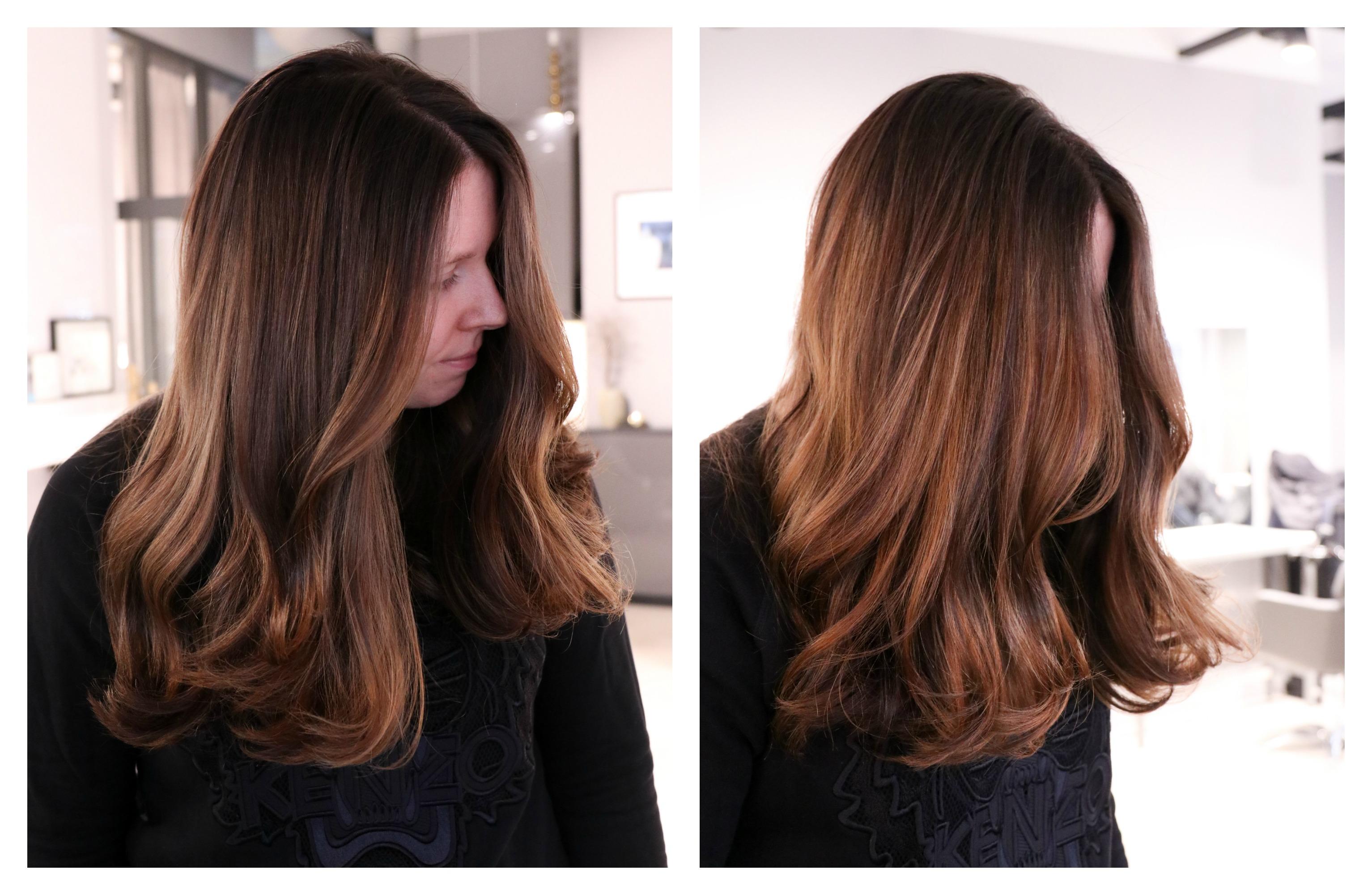 bruna nyanser hårfärg